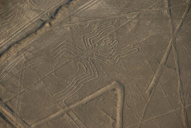 nazca lines spider