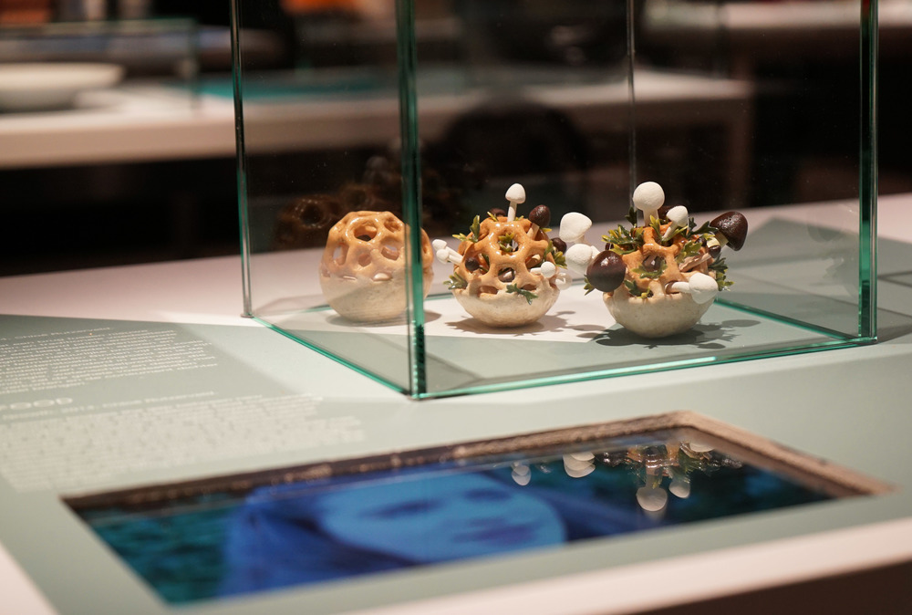 Picture of Edible Growth samples on exhibition in | Picture copyright