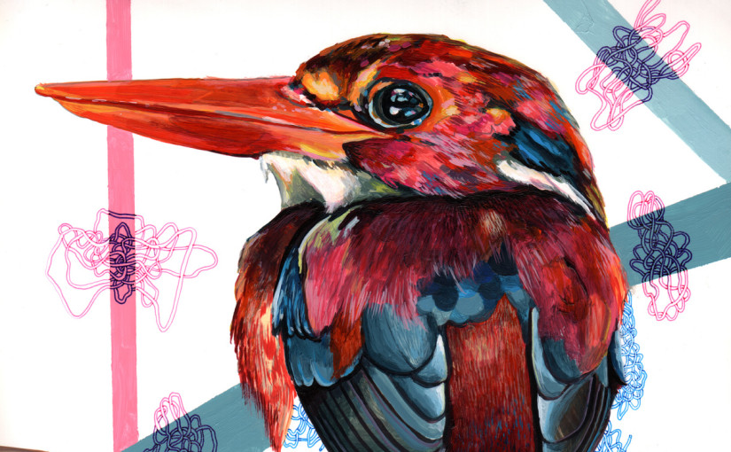 Picture Wednesday: Juan Travieso's colourful endangered birds | Day 324