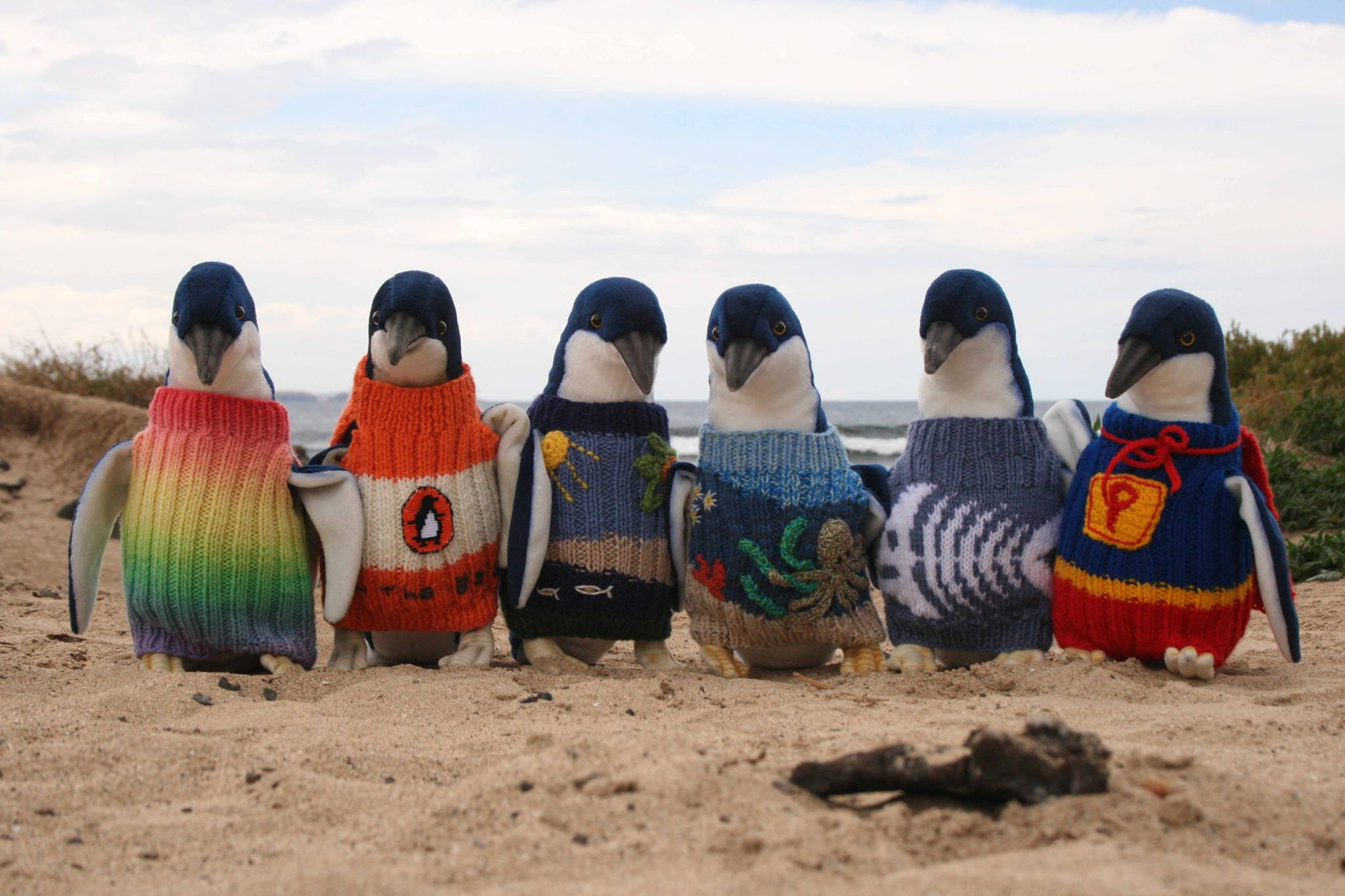 Penguin jumpers | Day 5