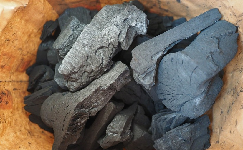 Activated charcoal – the hype and the truth | Day 349